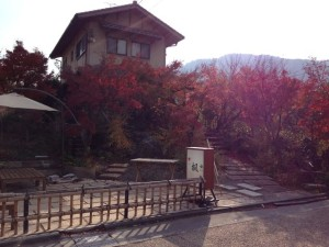 kyoto47